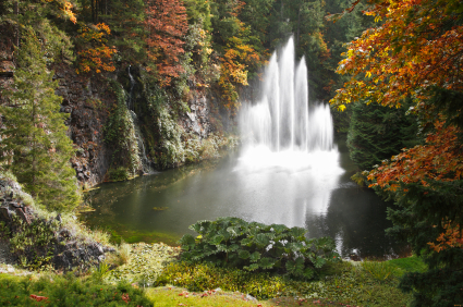 Secrets of the Fountain of Youth  – Part Two